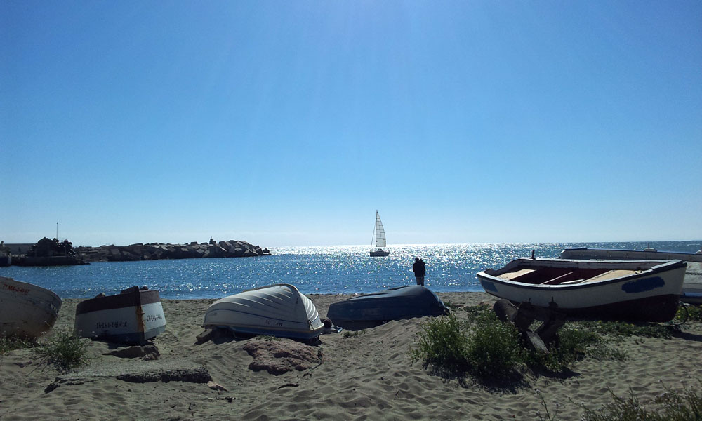 things to see and do in Marbella - Relax by the fishing port